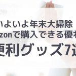 【年末これで完璧!】Amazonで買える大掃除の便利グッズ7選